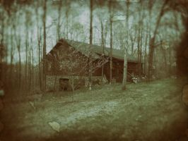 Old Timer's Cabin by rmh7069