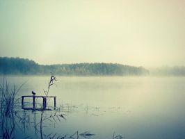 Lake in the fog - 1 by NY-Sema