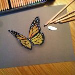 Butterfly by Alevire