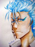 Grimmjow (2) by EvanRank