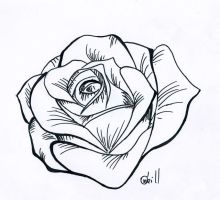 stencil rose by nat269