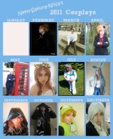 My 2011 Cosplay meme by Blueberry-Tale