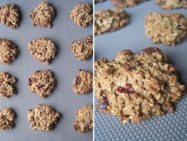 Cranberry Oatmeal Cookies by flameshaft