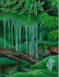 Ferns, Moss and Water by robertsloan2