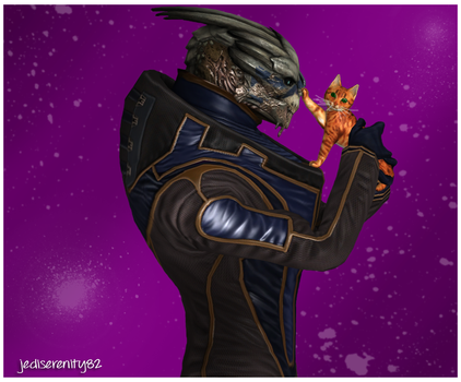 A Gift for Shepard - Garrus Vakarian {Mass Effect} by jediserenity82