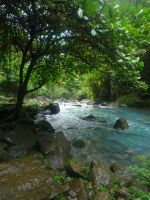 Rio Celeste by canciondemedianoche
