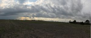 Field Panoramic by SeeMooreDesigns