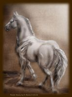 Model horse Oil-raw umber by PrincessXena1027