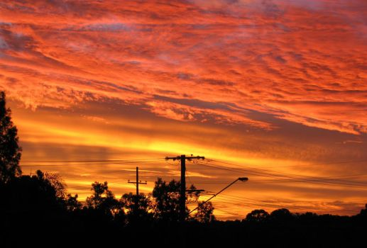 Suburban Sunset in Full Bloom1 by PinothyJ