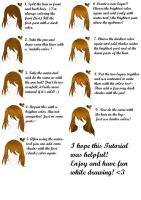 [Requested] 9 Steps Hair-Tutorial! Paint Tool Sai by Ikkie-Chan
