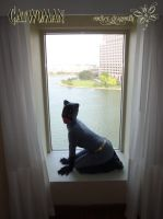 Kitty at the window by RockerDragonfly