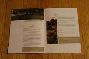 Olmsted Park Guide by FlumPail