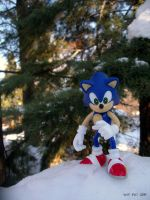 Sonic the Hedgehog in Winter by SurfTiki