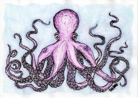 Pink Octopus Card by strryeyedreamr27
