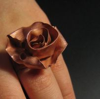 Rose Ring by ppt-ping