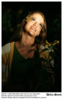 In the Sunflowers.10 by Della-Stock