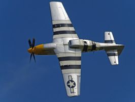 Mustang Rolls Old Warden by davepphotographer