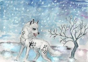 Snow by Hartwolf