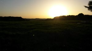 Field and sunset (dark version 1) by BMFMhero1991