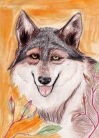 A Wolf's Secret by Wolven-Sister