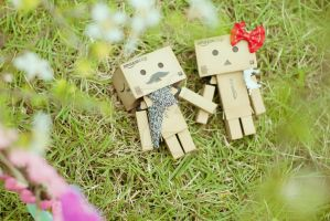 Danbo Love by dragoonmania