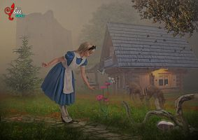 Alice in foggy afternoon - dheean by dheean