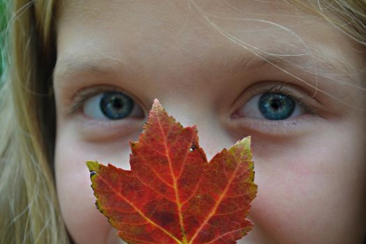 Red Leaf and Blue Eyes by JuReam