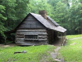 Old Wooden Cabin by rainbowdolphin14