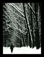 Winter_____walk by troyek