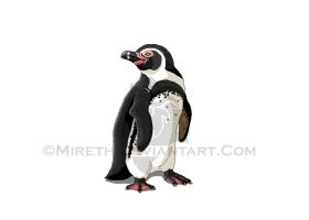 African Penguin by Mireth