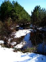 Snowy Creek by captainkodak1