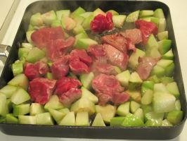 Grilling Lamb and Chayote Squash 1 by Windthin