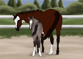 my new foal by BRls-love-is-MY-Live