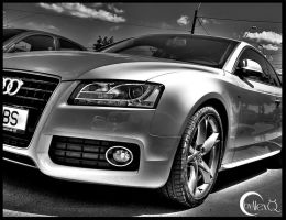 Audi HDR by Ironiada