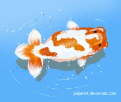 ranchu by poperart
