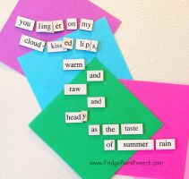 The Daily Magnet #192 by FridgePoetProject
