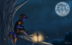Wish to the moon by hecatehell