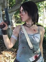 Tomb Raider by crystelalee