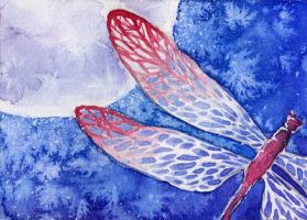 ACEO: Dragonfly by GreatUFO