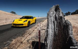 Corvette Stingray 2 by notbland