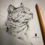 20170206 Cat Sketch Psdelux by psdeluxe