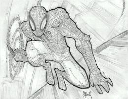 Spiderman by Gambear1er