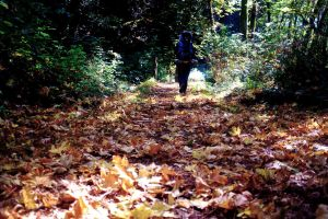 Hiking through the leaves by blakelemmons