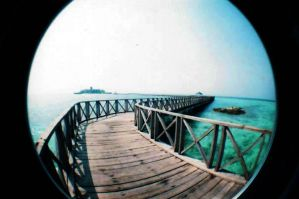 lomography by tharun85
