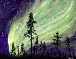 Northern Lights over the Forest by ThisArtToBeYours