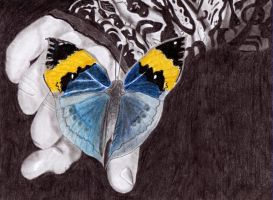 My butterfly avatar-drawing by nikusz88