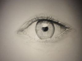 Eye 4 by marcidraws