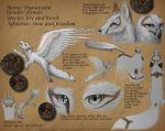 Reference sheet - Dynaisajia by The-fox-of-wonders