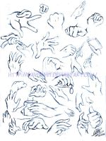 Hands Guide Study 2 by gh07