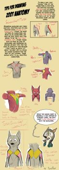 Tips for Zoot Anthro Anatomy - Shoulders and Torso by MonoFlax